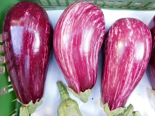 Aubergine Regional weiss/violett Hkl.I